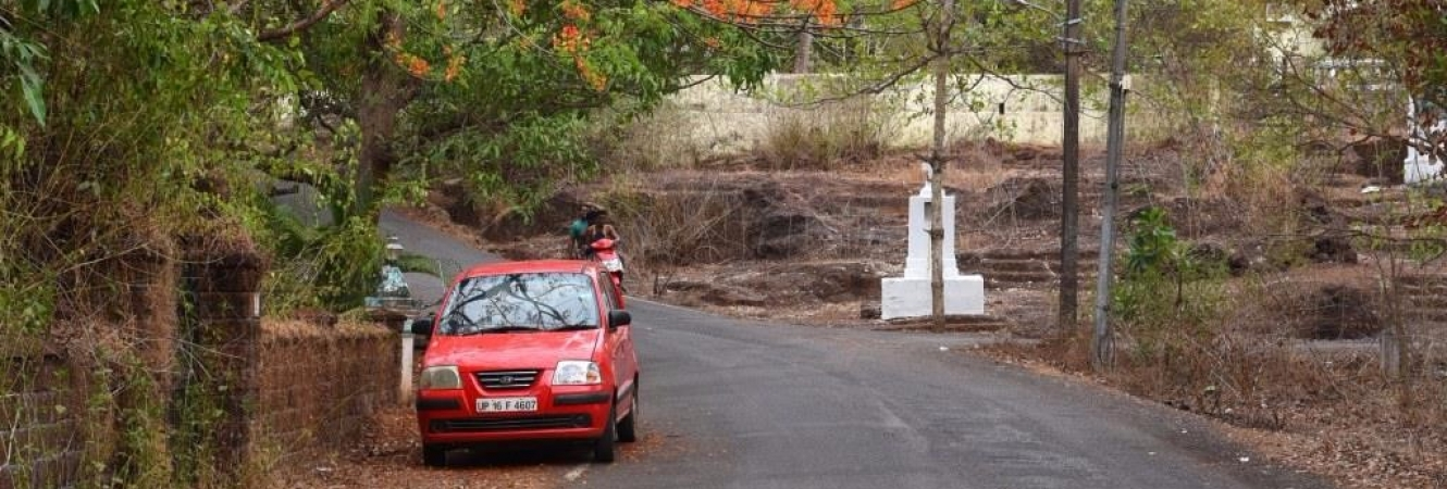 Activities on the island – Road in Chorao