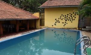 Terra Rosa-07 swimming pool